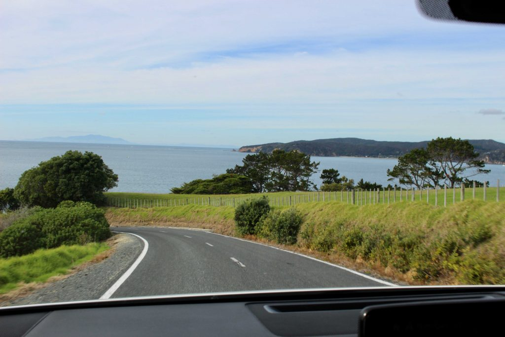 New Zealand open road
