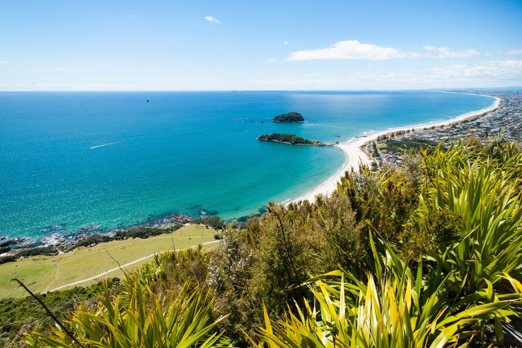 View from the summit of Mauao, Mount Maunganui