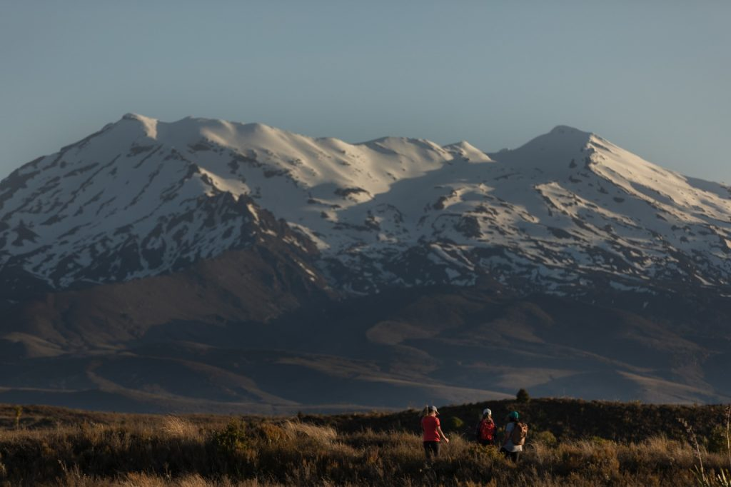 people hiking with mount ruapehu in background