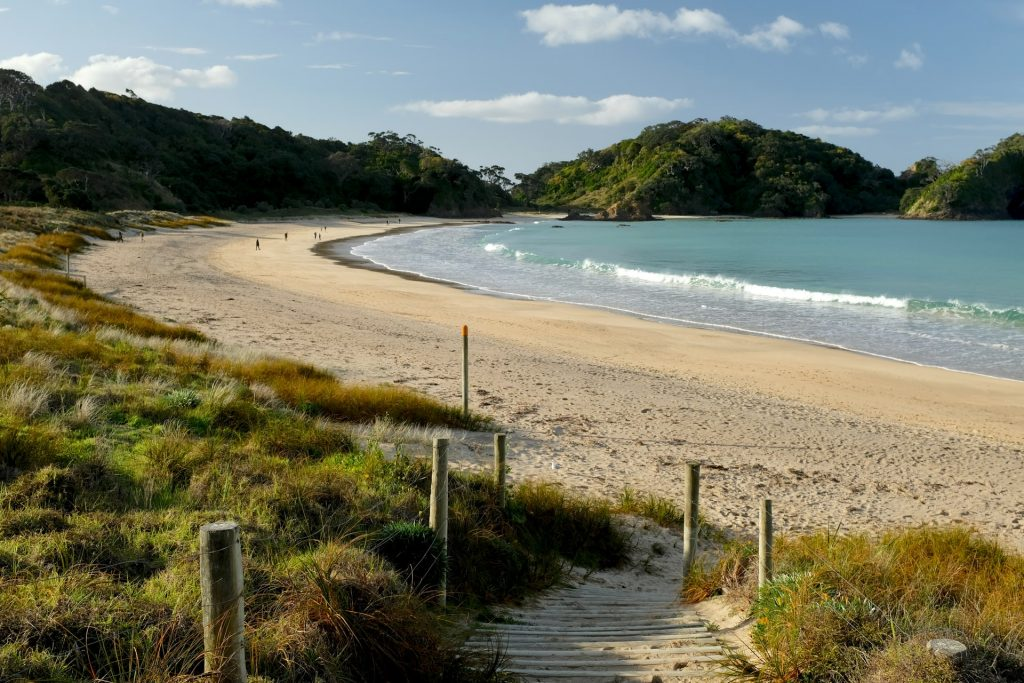 Matapouri Bay, Northland.  Photo credit: David Tip