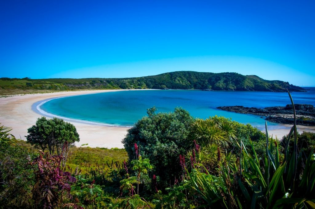 Maitai Bay, Northland.  Photo credit: David Kirkland