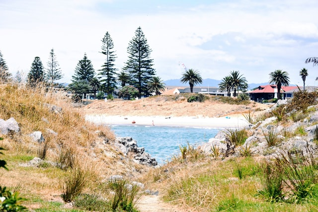 view from moturiki island